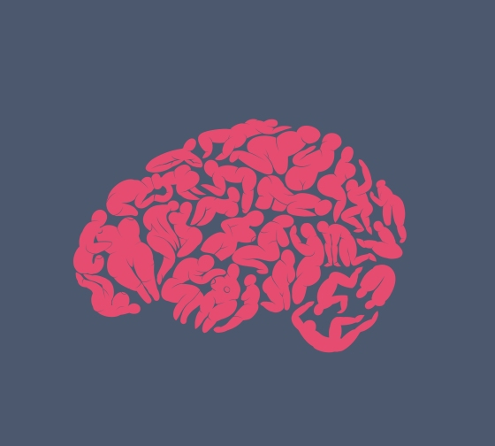 wyf brain only